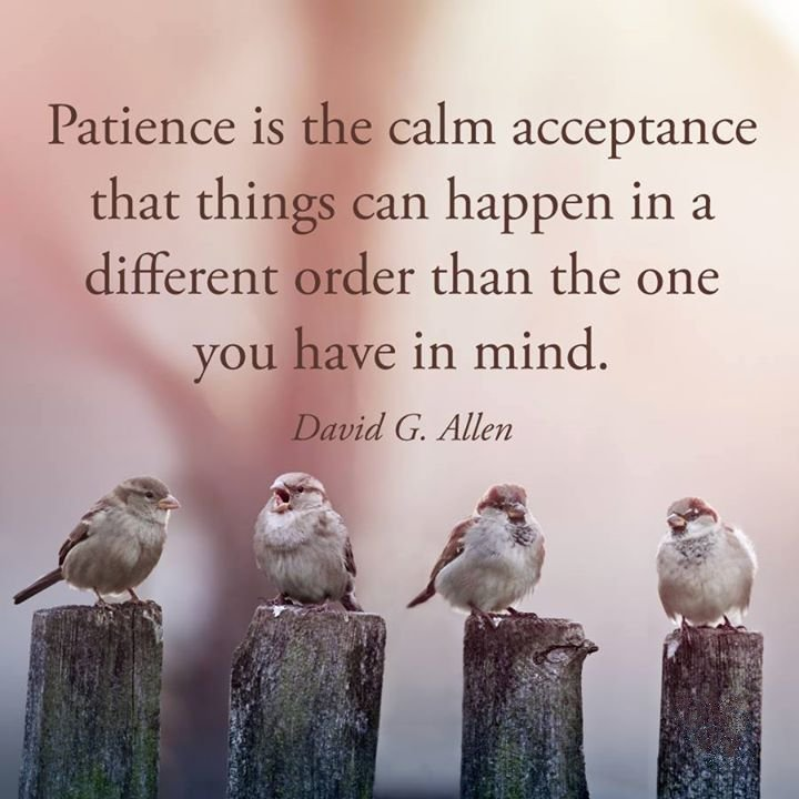 patience-is-the-calm