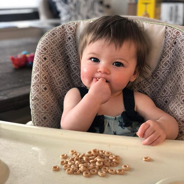 baby_child_cheerios_cereal